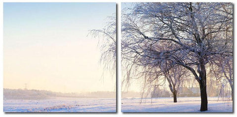 Wholesale Interiors VC-2046AB Snowy Solitude Mounted Photography Print Diptych - Each - Peazz.com