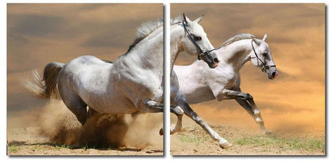 Wholesale Interiors VC-2055AB Galloping Grandeur Mounted Photography Print Diptych - Each - Peazz.com