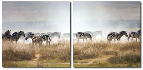 Wholesale Interiors VC-2056AB A Zeal of Zebras Mounted Photography Print Diptych - Each - Peazz.com