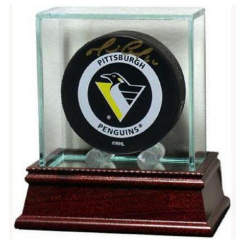Steiner Glass Puck Display - Peazz.com