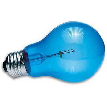 100 Watt Daylight Blue Inc Reptile Bulb (DB-100) - Peazz Pet