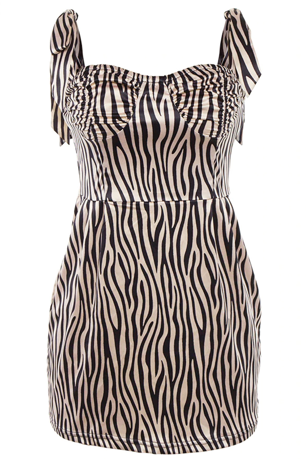 Zebra Print A-Line Mini Dress - Dress - Dakota Collective - Dakota Collective