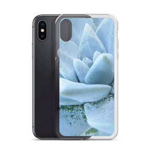 iPhone case featuring a soft powdery blue highly detailed macro photo of a succulent plant. The photo was taken on one of the most remote National Parks in the U.S, Santa Cruz Island, Channel Island. Sale price twenty dollars.