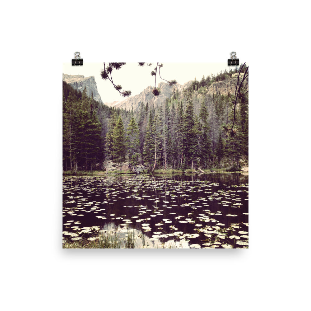 Nymph Lake, Rocky Mountains | Poster