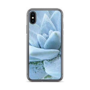iPhone X case featuring a soft powdery blue highly detailed macro photo of a succulent plant. The photo was taken on one of the most remote National Parks in the U.S, Santa Cruz Island, Channel Island. Sale price twenty dollars.