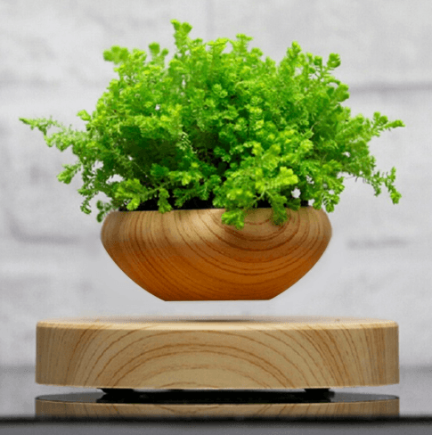 Levitating Wood Grain Planter