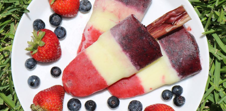Dog-friendly Popsicle Recipe