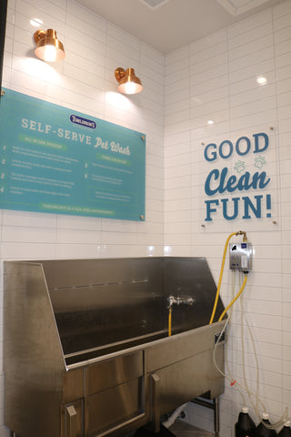 self serve dog wash austin