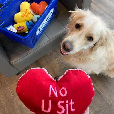 valentine's day toys for dogs and cats