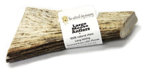 Natural Dog Co. Moose Antler, Large