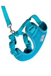 RC Pets Adventure Teal Kitty Harness