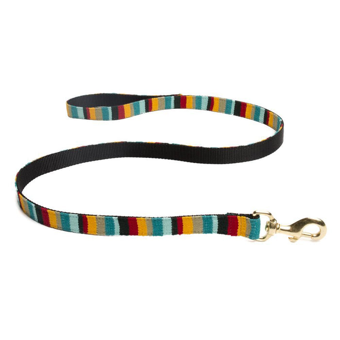 a tail we can wag dog leash