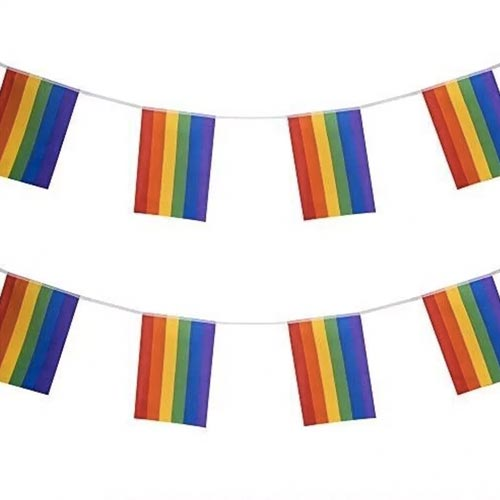 Gay Pride Rainbow Flag Bunting Small (3m x 10 flags)