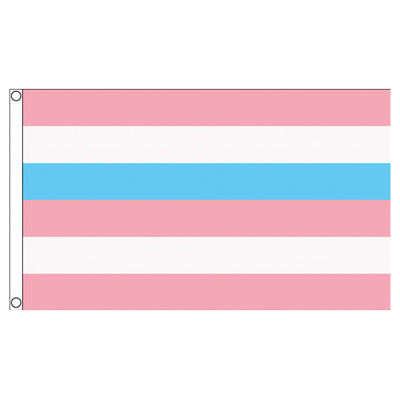 Intersex Pride Flag Pink/Blue (5ft x 3ft Premium)