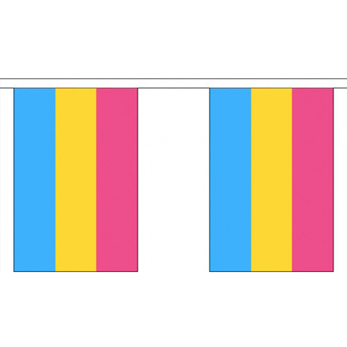 Pansexual Pride Flag Bunting Small (3m x 10 flags)