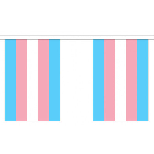 Transgender Pride Rainbow Flag Bunting Small (9m x 10 flags)