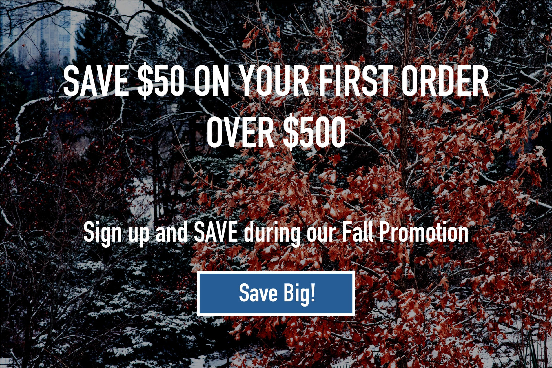 Subscribe to our email list and save $50 on your first order over $500