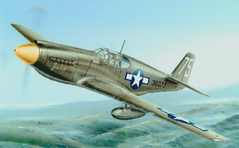 Special Hobby 1/72 P51A/F6A Mustang Fighter Kit