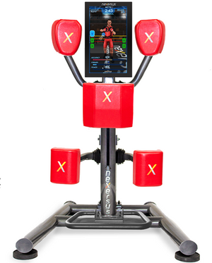 Nexersys N3 Commercial Fitness Gaming