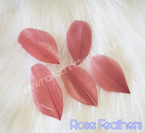 Rose Feathers
