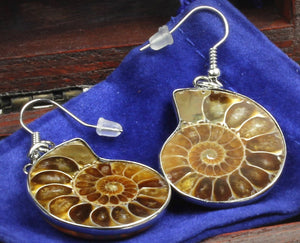 Genuine Ammonite Fossil Earrings, Packaged in a Velvet Pouch inside Wooden Handcrafted Treasure Chest Box, Bonus Educational Card, Dancing Bear Brand.