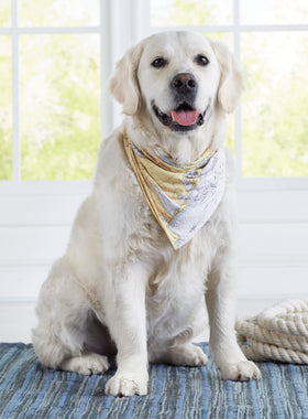 Custom Nautical Chart Dog Bandana