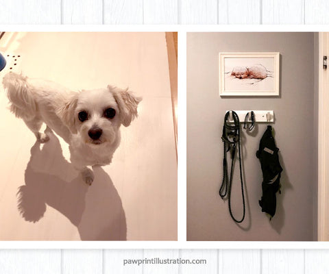 Maltese Puppy Leeloo with her new artwork in her corner