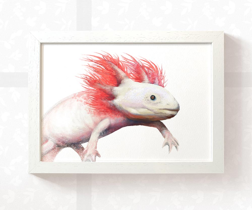 Axolotl Art Print | Water Dragon Wall Art - Pawprint Illustration