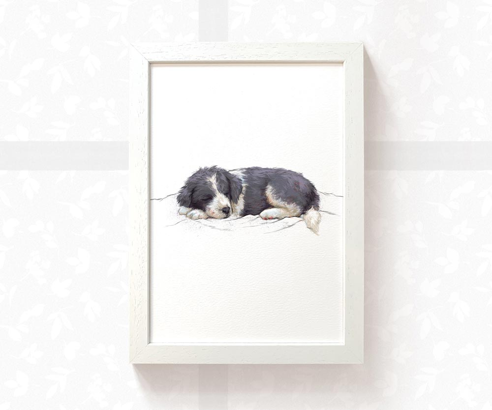 Border Collie Puppy Animal Print - Pawprint Illustration
