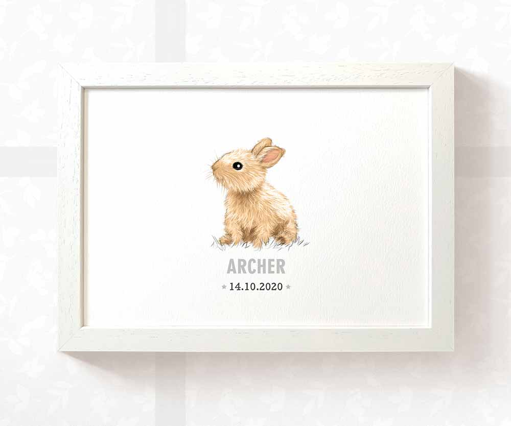 Rabbit baby name and date sign