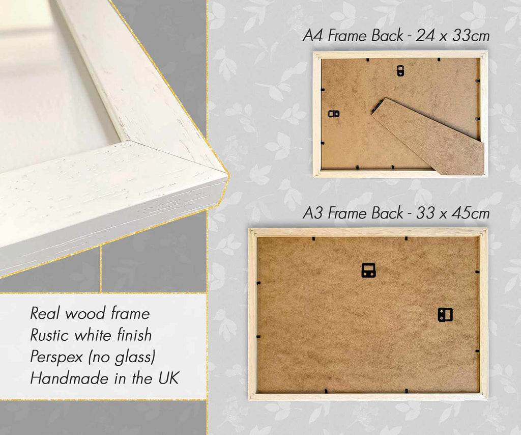 Pawprint Illustration White Wood Frame Information