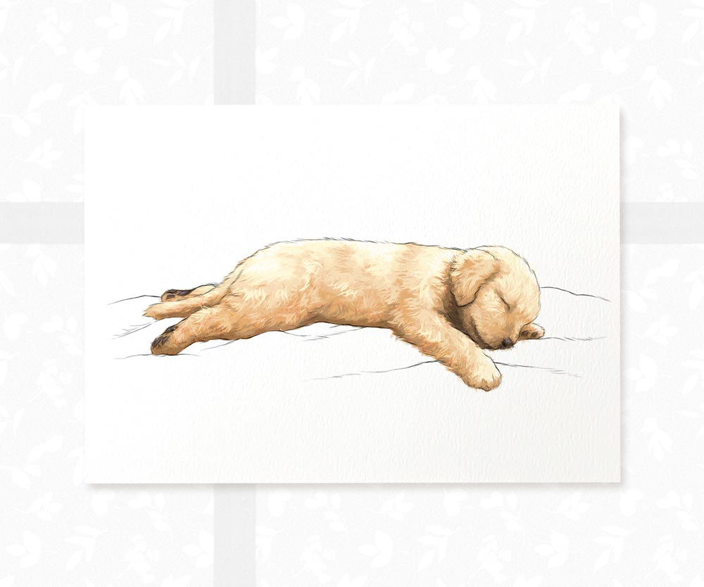 Splooting Golden Retriever Dog Wall Art Print