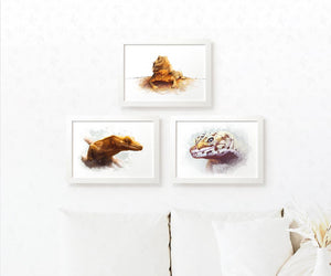 Set of 3 Reptile Posters including a Crested Gecko, Bearded Dragon and Leopard Gecko
