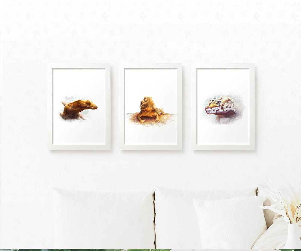Set of 3 Lizard Prints including a Crested Gecko, Bearded Dragon and Leopard Gecko