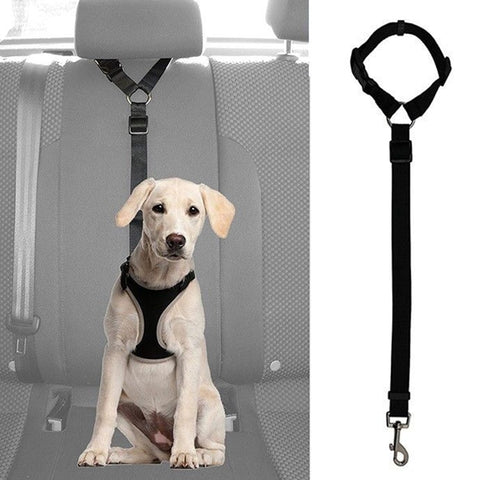 Practical Pet Belt Harness Leash Travel Clip Strap Lead