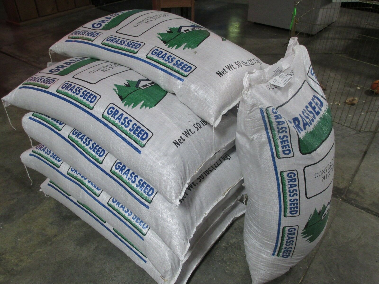 Fast Germination CONTRACTORS MIX GRASS SEED Kentucky 31 and Ryegrass Mix