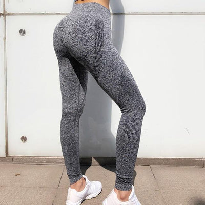 Seamless  Women Gym Yoga  Workout Sets - Hamilton Fitness Apparel