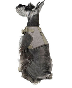 Martha Stewart Fashionable Tweed Dog Harness Grey Bowtie,XX-Small - Midtown Bargains