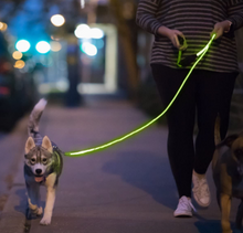 Nitey Leash Fiber Optic and LED Dog Leash Green - Midtown Bargains