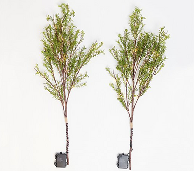 Bethlehem Lights Set of 2 Illuminated Decorative Spring Branches