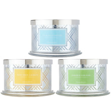 HomeWorx by Harry Slatkin S/3 Deluxe 18 oz 4-Wick Candles, Spring Scent - Midtown Bargains