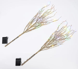 Bethlehem Lights Set of 2 Glitter Sprigs with Color LEDS, Silver - Midtown Bargains