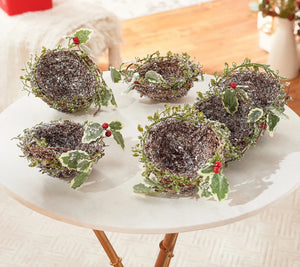 "Set of (6) 5"" Frosted Bird Nests with Clips by Valerie - Midtown Bargains"
