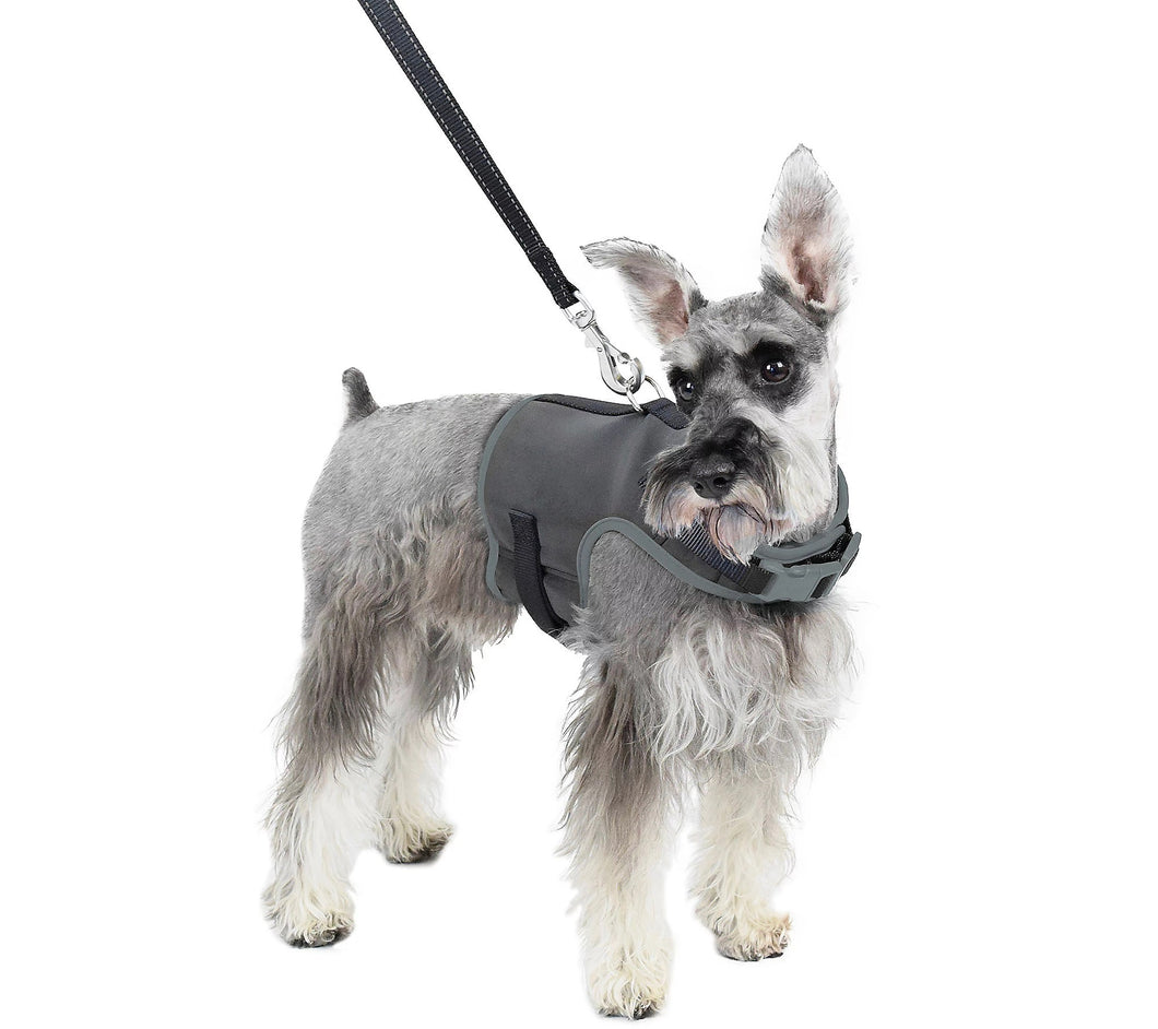 Martha Stewart Reflective Dog Harness w/ Matching Lead Grey	X-Small - Midtown Bargains