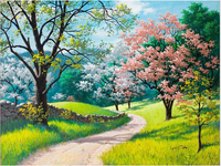 16x20 inch Frameless - Diy Painting Spring Pathway