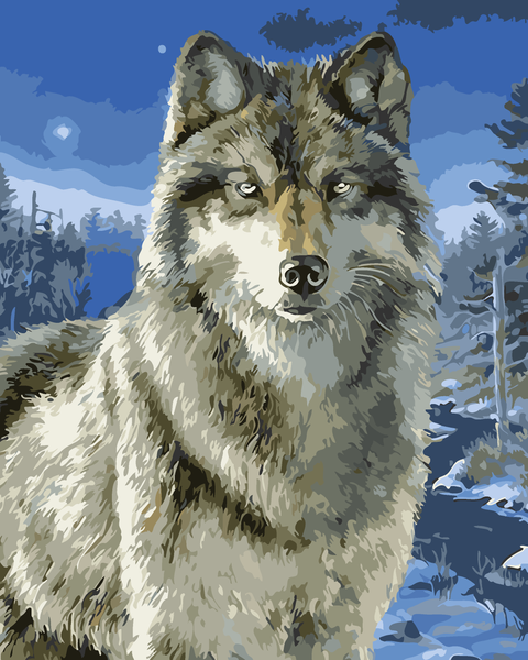 Diy Oil Painting Paint by Number Kit for Adults Boys Girls Kids Gifts(Snow Wolf)