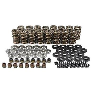 "LS RPM SERIES DUAL SPRING KIT-1.324""O.D. X 0.750 MAX LIFT-TITANIUM RETIANERS-MINI 8 DEGREE CHP-LSX0625"