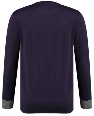 Back perspective of classic fit o-neck purple long sleeve pullover sweater knitwear for men