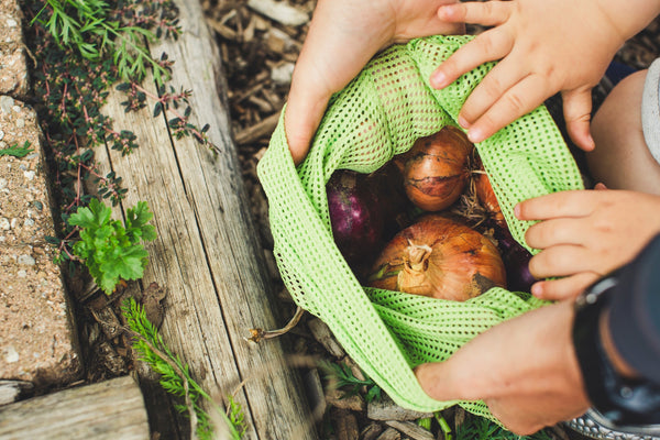 Plastic Free July: Adult and child hands show the vegetable contents of a mesh bag