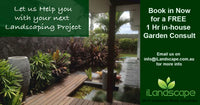 Free Garden Consult for Landscaping Project